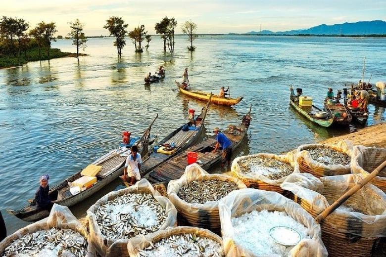 Hải Phòng - Sài Gòn - Cần Thơ - Sóc Trăng - Bạc Liêu - Cà Mau