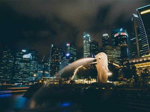 2. Singapore - Malaysia ( TROD )